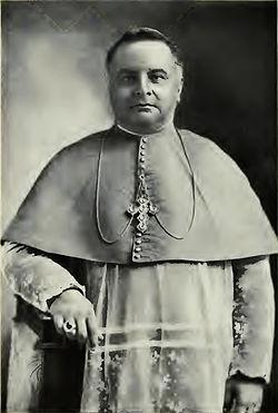 D. João Paulino de Azevedo e Castro